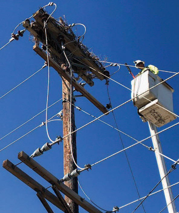 A lineman on power line with a nest on it.